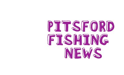 Fishing news from Pitsford Water